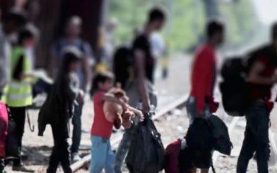 Protección jurídica a las personas migrantes en el mundo actual